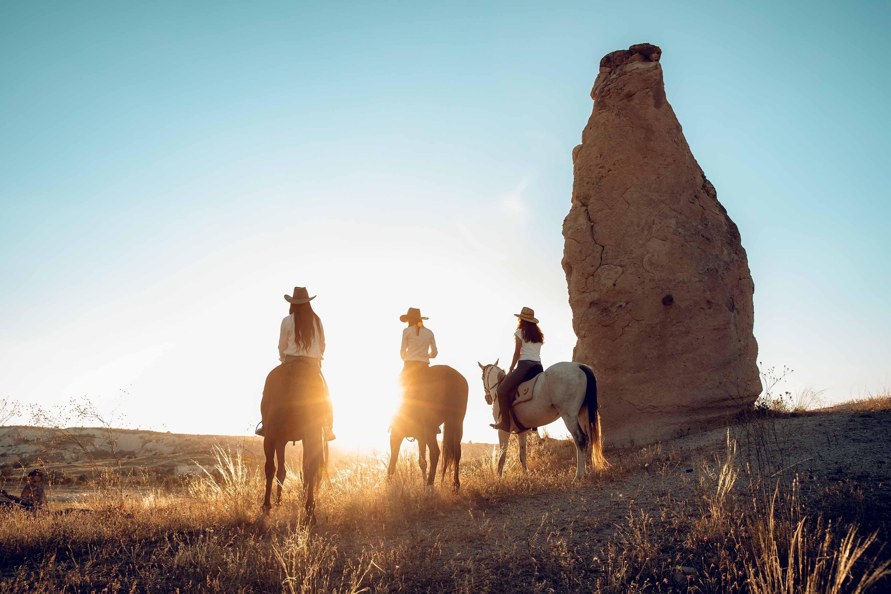 Anatolian Horses